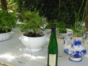 Festplatte - temporärer Garten, Ulrich Singer, Sabine Schäfer